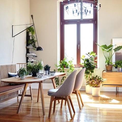 Wohnzimmer Ideen Mit Pflanzen