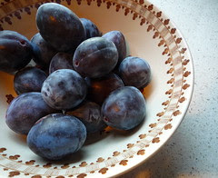 fall plums