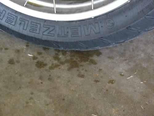 puddle under BMW