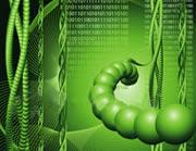 Biological Internet