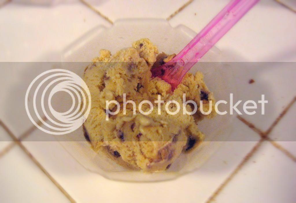 Butter Pecan Ice Cream by freshfromthe.com