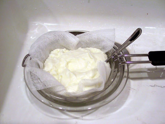 Yogurt by Mom the Barbarian, on Flickr