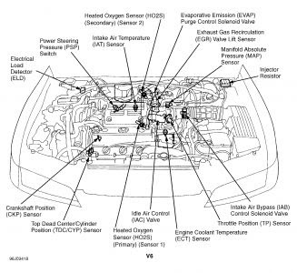 2000 Accord Engine Diagram Wiring Diagram Page Fat Best Fat Best Granballodicomo It