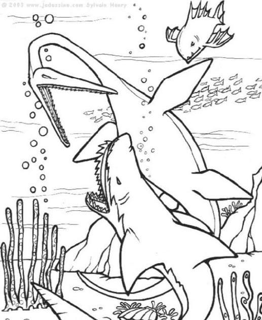 dinosaurier kampf ausmalbilder  ausmalbilder und vorlagen