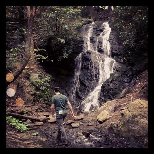 Hiking with Rye #somethingthatmakesyouhappy #photoadaymay
