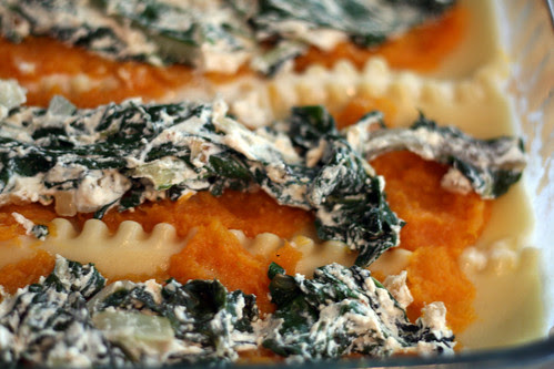 butternut squash & swiss chard lasagna