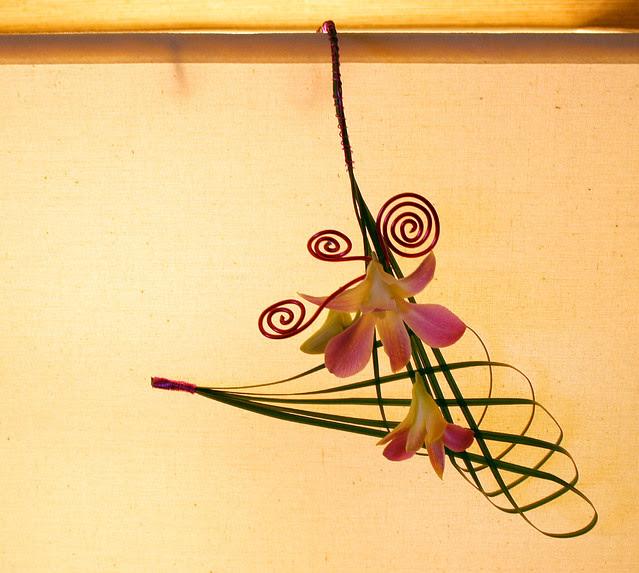 IMG_5427 Tracy Lou napkin or  lampshade decoration