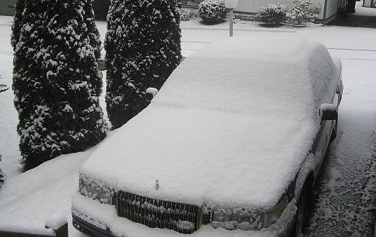 2nd snow 08