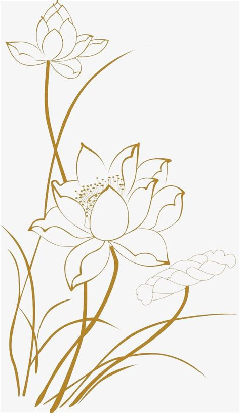 lotus  drawings lotus clipart  clipart lotus