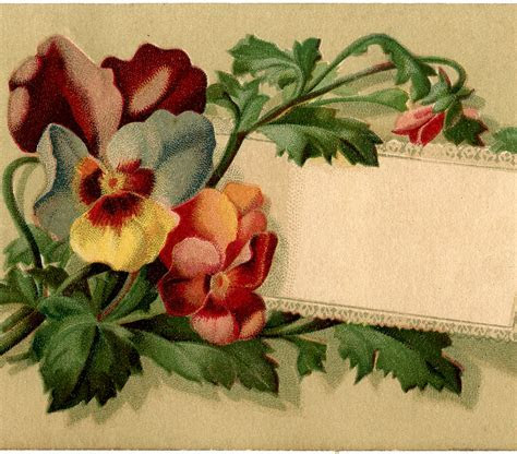Vintage Pansy Label!   The Graphics Fairy