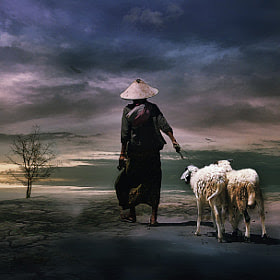No Grass by 3 Joko (3Joko)) on 500px.com