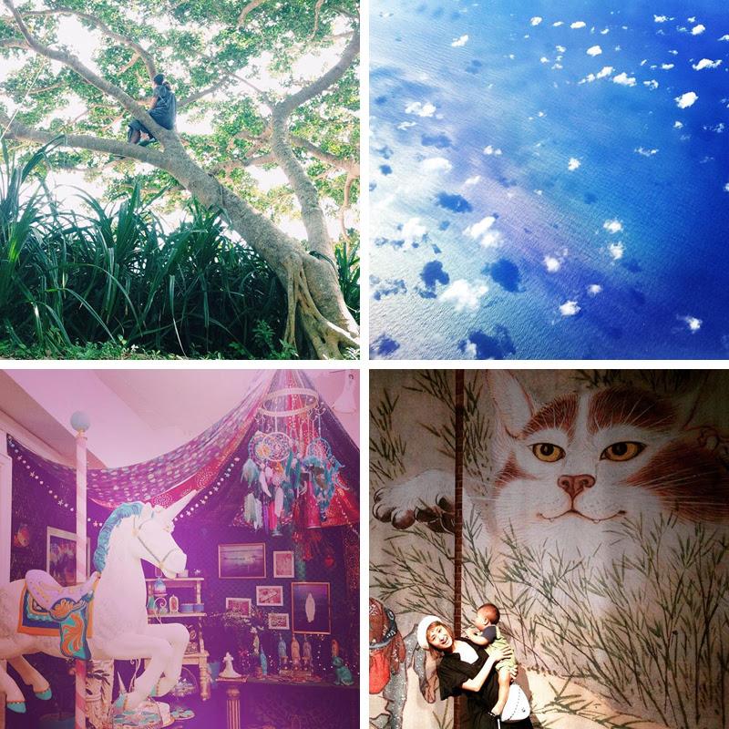 Instagram Favorites   chainyan.co