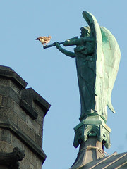 Red-Tailed Hawk atop Cathedral of St. John the Divine