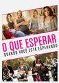 O Que Esperar Quando Você Está Esperando | filmes-netflix.blogspot.com