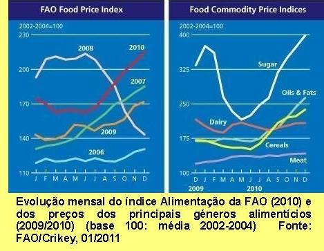 Evolução mensal do índice Alimentação da FAO (2010) e dos preços dos principais géneros alimentícios (2009/2010) (base 100: média 2002-2004).
