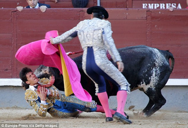 Daniel García Navarrete was left with life-threatening injuries after being gored in the head by a 1,000 lb bull in Madrid