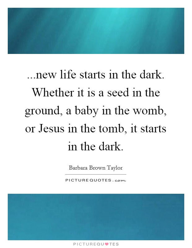 New Life Starts In The Dark Whether It Is A Seed In The
