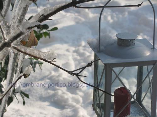 Giardino d'inverno