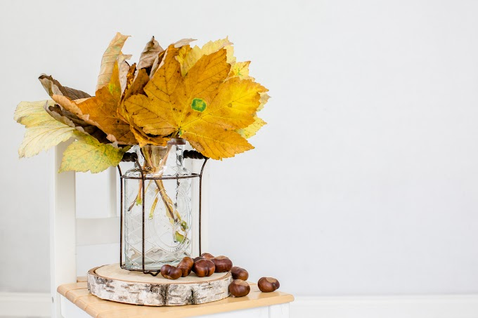 TREND ESSENCE: San Francisco grocery store selling $15 bouquets of 'organic' fall leaves