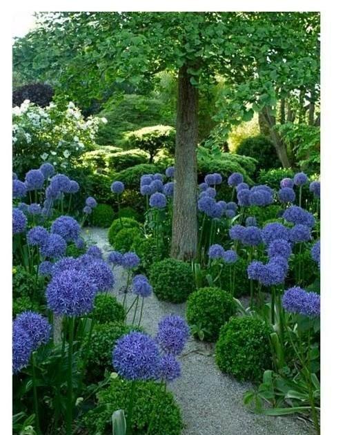 Beautiful Garden Decors Ethan: eclectic landscape by ...