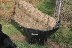 salt marsh hay bale