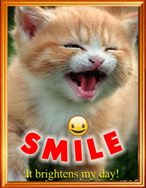 Smiling Kitty. Free Smile Month eCards, Greeting Cards