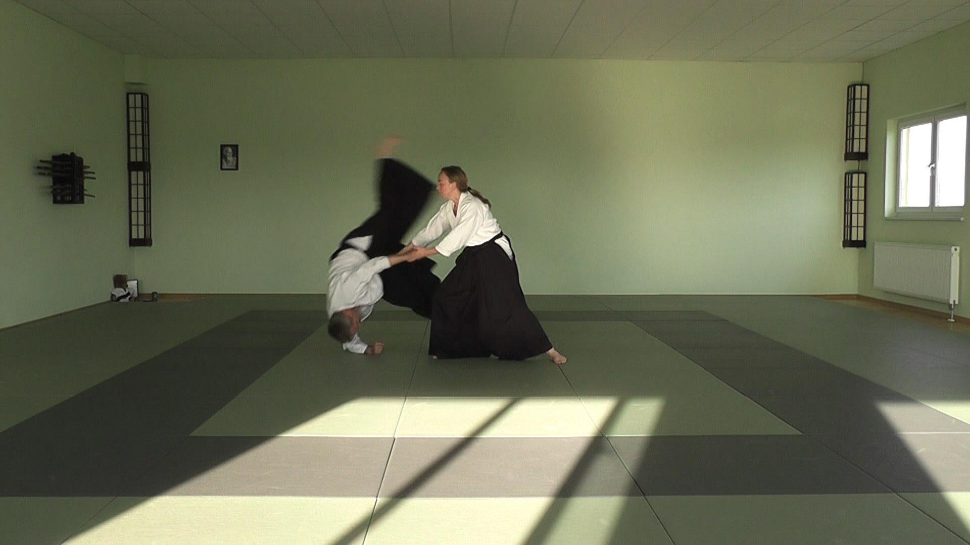 View Aikido Wallpaper Gif