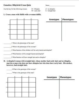 Dihybrid Cross Practice Problems Worksheet Answer Key ...
