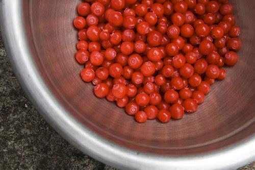 bowl o' huckleberries