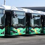 בשל חג הקורבן: 20% מהאוטובוסים לא יגיעו השבוע לתחנה - כלכליסט