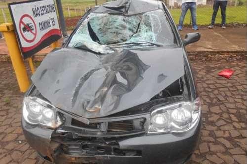 Laranjeiras - Dois veículos se envolvem em acidente, após atropelar um cavalo na BR-277