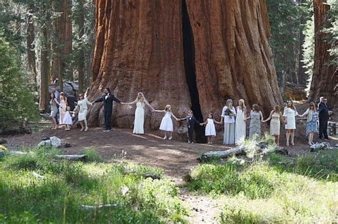 Sweet and Earthy Sequoia National Park Elopement