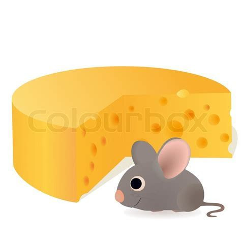 Funny mouse near the cheese   Vector   Colourbox