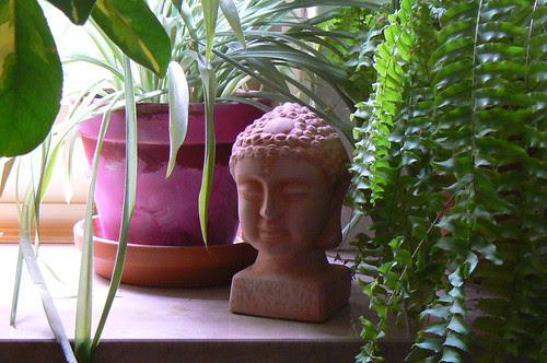 Buddha by FrauNesta