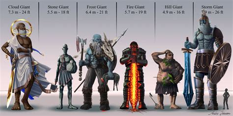 dd giants size comparison