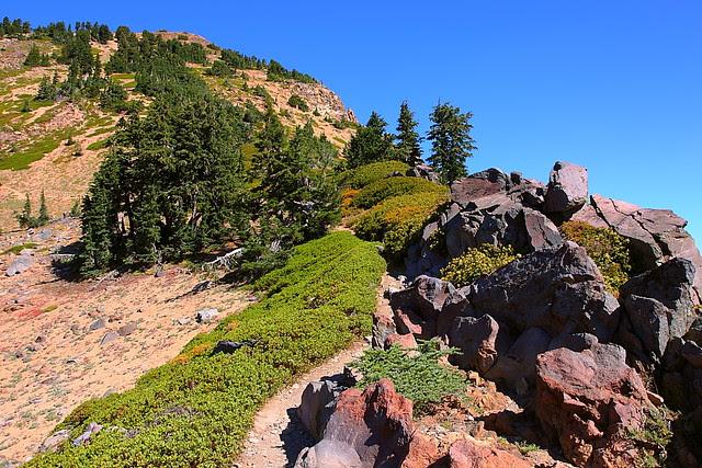 IMG_4755 Brokeoff Mountain Trail