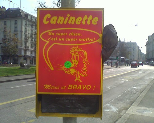 canintte