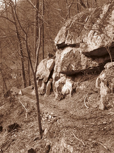 Doyle River Trail
