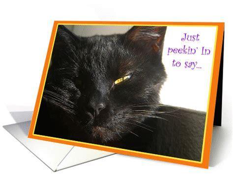 Black Cat Happy Birthday card (234416)