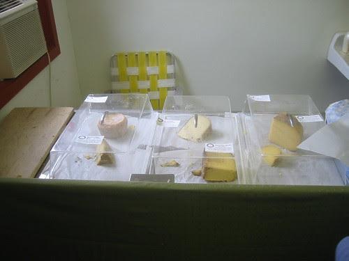 Cato Corner cheeses