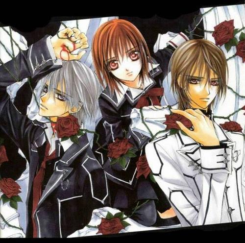 http://img4.wikia.nocookie.net/__cb20121005231249/vampireknightenespanol/es/images/3/39/Vampire_Knight_-_Manga_4.5.jpg