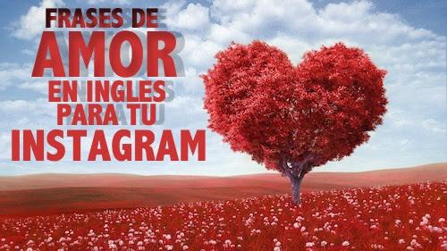 Frases De Amor En Ingles Para Tu Instagram
