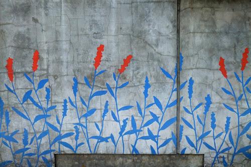 dear-ada:  Field notes (flora & fauna) from the urban jungle «sakurasnow