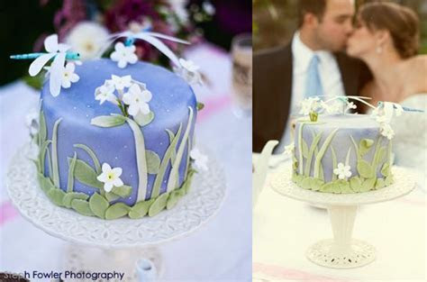 17 Best images about Dragonfly Cakes on Pinterest