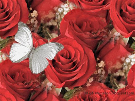 kool image gallery animated red rose