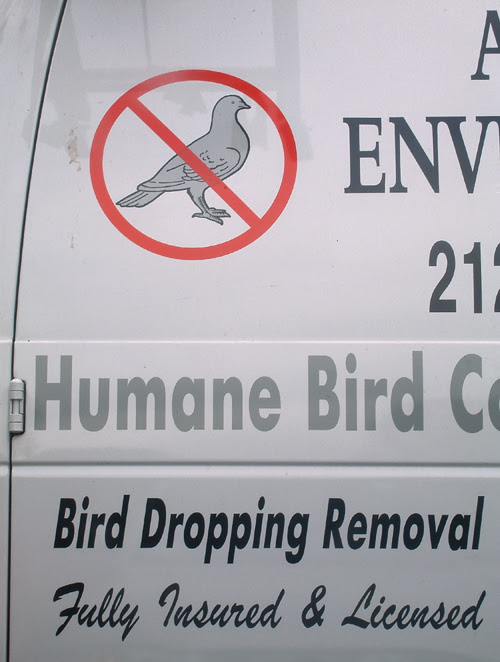 bird removal van