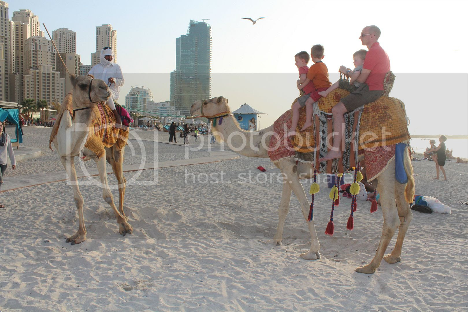 riding a camel in dubai