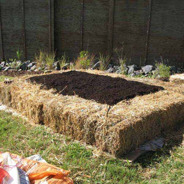 Garden-Bed-Edging-Ideas-AD-16