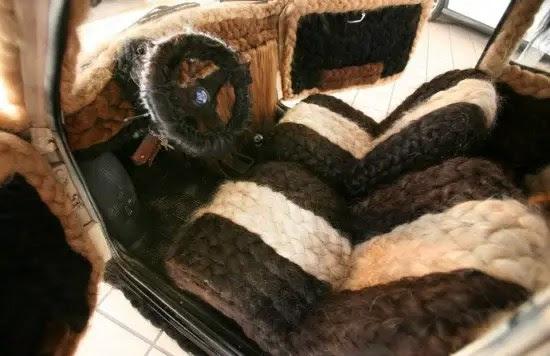 car-covered-in-hair3-550x356