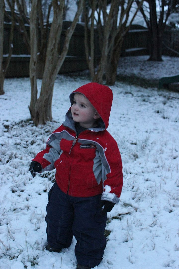 photo snow18_zps237eefa6.jpg